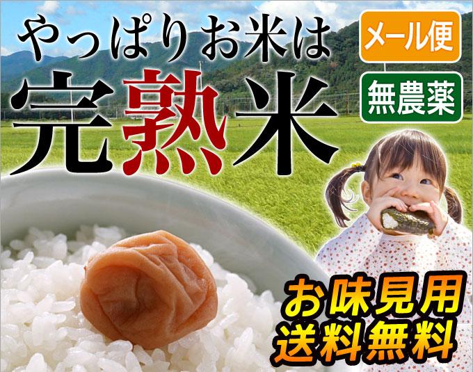近江米味見用